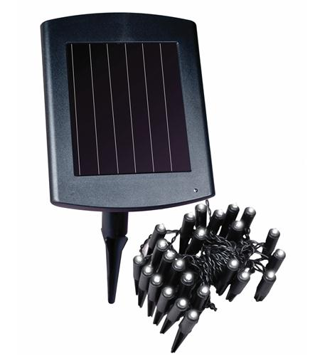 Solar-Powered Plant and Border Light